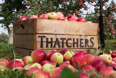 Thatchers omenalaatikko